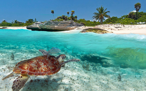 an-awesome-scenery-at-Playa-Del-Carmen